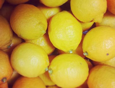 WS06_201402_レモン2